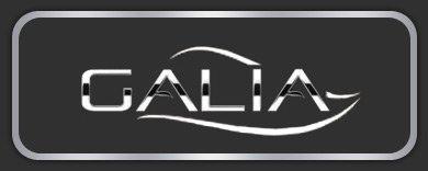 Каталог лодок, катеров, яхт торговой марки Galia
